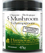 Harmonic Arts Organic 5 Mushroom Dual Extract Drinking Chocolate Powder