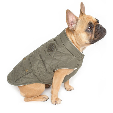 Canada Pooch Cityscape Coat Green Sizes 14+-18