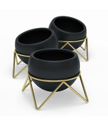 Umbra Potsy Planter Set Black/Brass