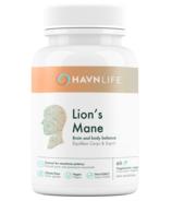 HAVNLIFE Lion's Mane