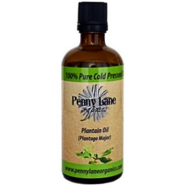 Penny Lane Organics Plantain Herbal Oil