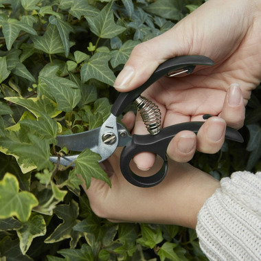 Kikkerland Garden Shears