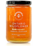Beekeeper's Naturals 100% Raw Wildflower Honey