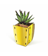 Fred Pop Plants Desk Caddy Aloe