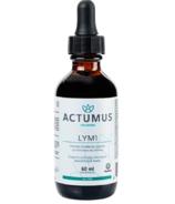 Actumus LYM 1