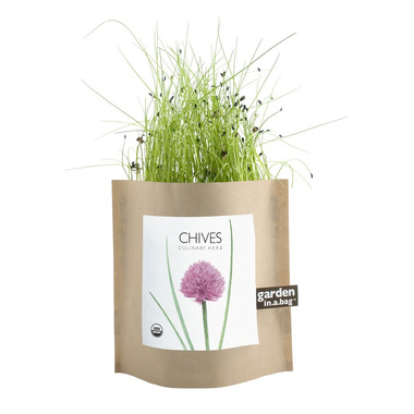 Potting Shed Creations Chives Garden-in-a-Bag