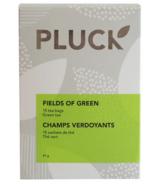 PLUCK Fields of Green Tea