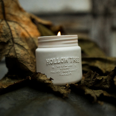Hollow Tree Library Of Trees Candle Douglas Fir