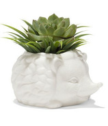 Kikkerland Prickles the Hedgehog Planter