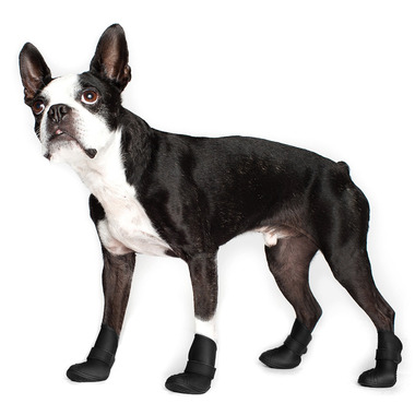 Wellies Boots for Dogs Extra Small in Black