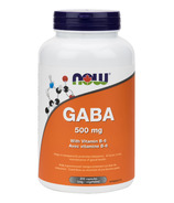 NOW Foods B-6 Plus 500mg GABA