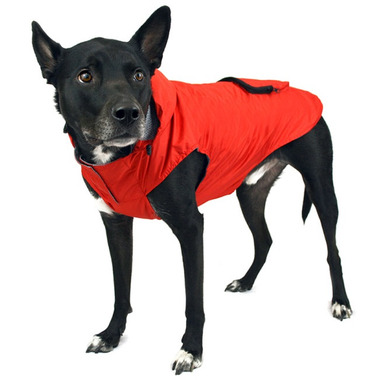 Canada Pooch Pacific Poncho in Green Sizes 10-20