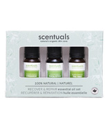 Scentuals Pure Essential Oil Gift Set Recover And Repair