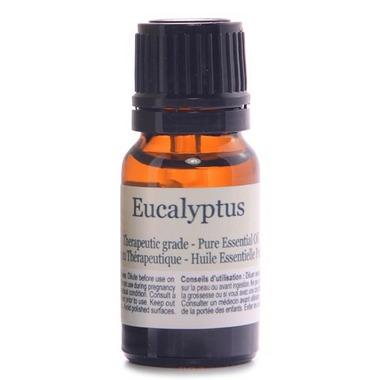 Finesse Home Eucalyptus Essential Oil