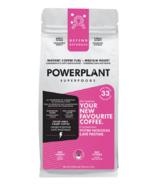 PowerPlant Superfoods Organic Chaga Mushroom Instant Coffee Fuel DEFEND