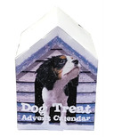 Falvai Creative Dog Treat Advent Calendar