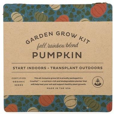 Modern Sprout Garden Drop-In Kit Pumpkin