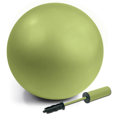 Everlast Anti-Burst Fitness Ball with Pump