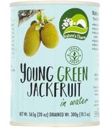 Jeune jacquier vert dans son eau de Nature's Charm