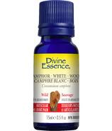 Divine Essence Wild White Camphor Wood Essential Oil