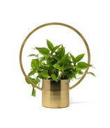 Natural Living Hanging Planter Gold