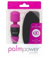 PalmPower Masseur de poche PalmPower