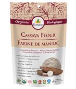 Ecoideas Organic Cassava Flour