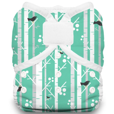 Thirsties Duo Wrap Hook & Loop Diaper Aspen Grove