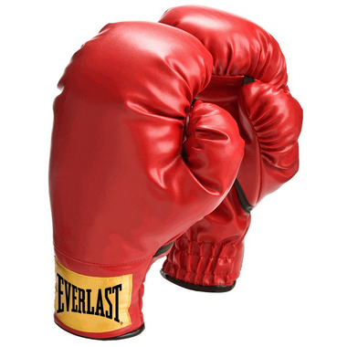Everlast Small Laceless Training Boxing Gloves