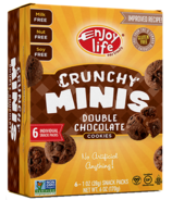 Enjoy Life Mini Crunchy Cookies Double Chocolate