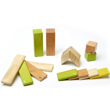 Tegu Magnetic Wooden Block Set Jungle