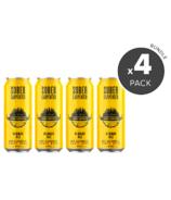 Sober Carpenter Blonde Ale Non-Alcoholic Craft Beer Bundle