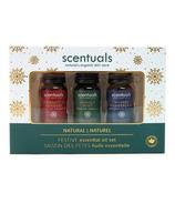 Scentuals Festive Essential Oil Set