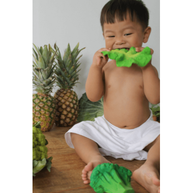 Oli and Carol Kendall the Kale Toy Teether