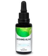 Oceans Alive Raw Phytoplantkon