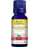 Divine Essence Pine Wild Scotch Sylvestre