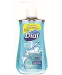 Dial Anti-Bacterial Hand Soap