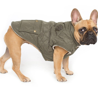 Canada Pooch Cityscape Coat Green Sizes 10-12