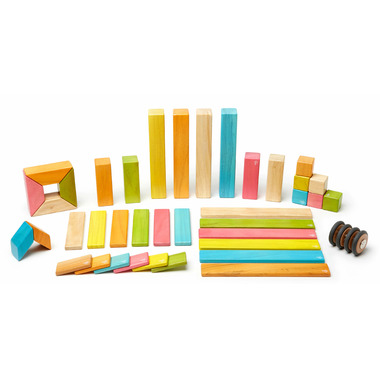 Tegu Magnetic Wooden Block Set Tints