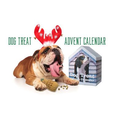 Falvai Creative Dog Treat Advent Calendar