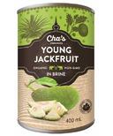 Cha's Organics Young Jackfruit In Brine
