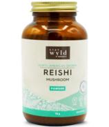 Stay Wyld Organics Reishi Powder