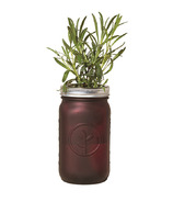 Modern Sprout Garden Jar Sage