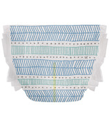 The Honest Company Diapers Teal Tribal Size 2