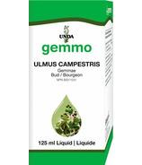 UNDA Ulmus Campestris