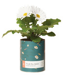 Modern Sprout Waxed Planter Thank You Daisies