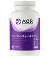 AOR Strontium Support II Bone Support