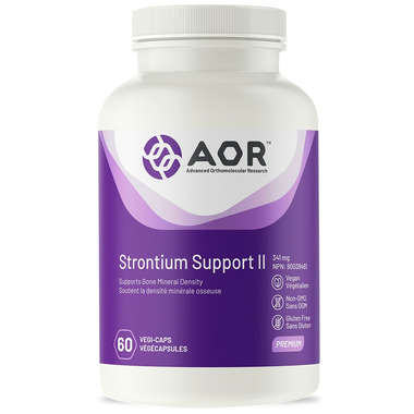 AOR Strontium Support II Bone Support