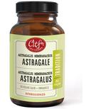 Clef des Champs Organic Astragalus Capsules