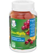 Gerber Grow Mighty Kids Gummies Supplement